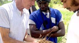 agroecologia en el sahel